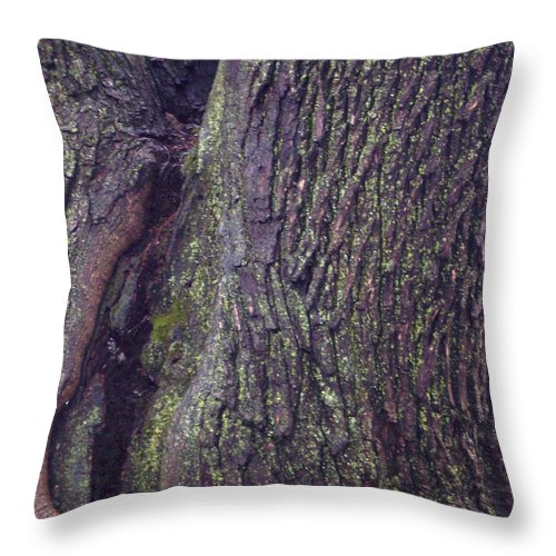 Nature Abstract Modern Green Tree Bark Stripes Pattern Throw Pillow featuring the photograph Abstract Bark 6 by Anna Villarreal Garbis