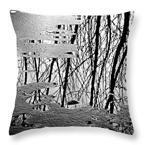 Ice Throw Pillow featuring the photograph Abstract In Ice by Marilyn Hunt