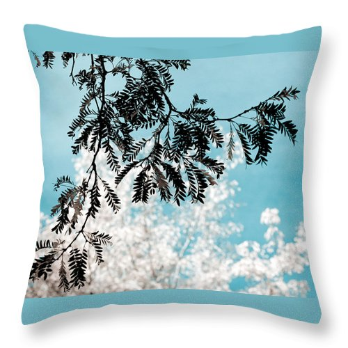Tree Throw Pillow featuring the photograph Abstract Locust by Marilyn Hunt