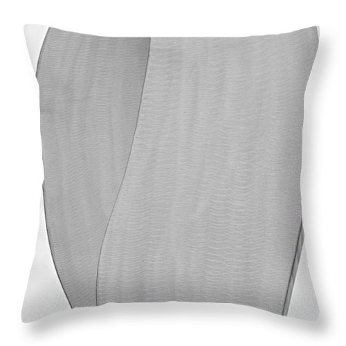 Abstracts Throw Pillow featuring the photograph Abstract One Fine Art by James BO Insogna