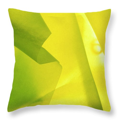 Abstract Throw Pillow featuring the photograph Abstract Yellow And Green by Stefania Levi