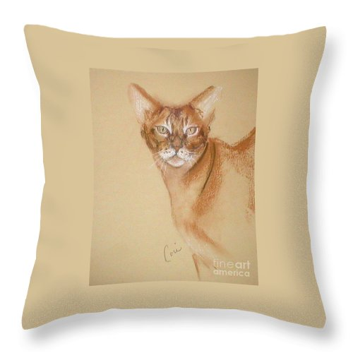Pastel Throw Pillow featuring the drawing Abyssinian by Cori Solomon