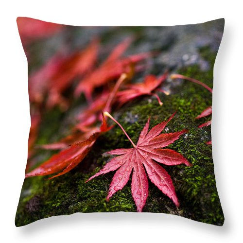 Acer Throw Pillow featuring the photograph Acers Fallen by Mike Reid
