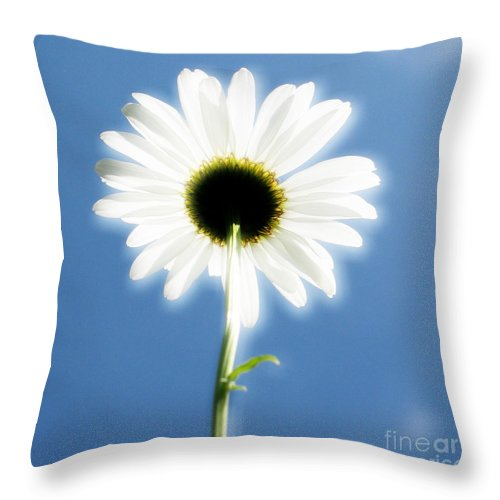 Daisy Throw Pillow featuring the photograph Achievement by Idaho Scenic Images Linda Lantzy
