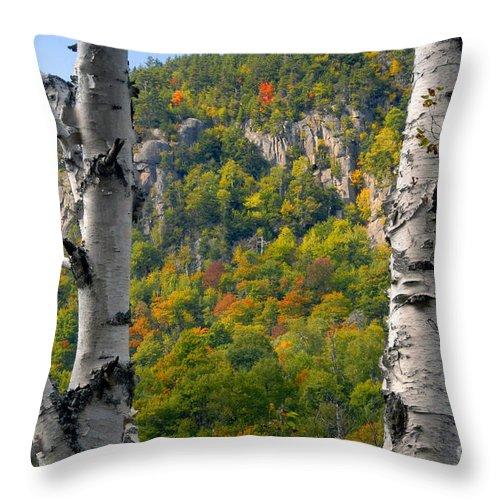 Adirondack Mountains New York Throw Pillow featuring the photograph Adirondack Mountains New York by David Lee Thompson