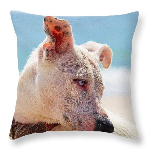 Dog Art Throw Pillow featuring the painting Adorable Small Dog On The Beach by Queso Espinosa