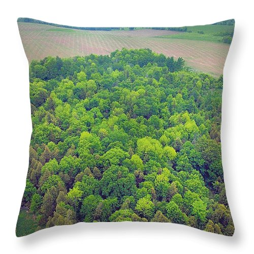 Aerial Throw Pillow featuring the photograph Aerial Forest by Steve Somerville