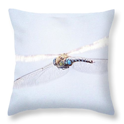 Dragonfly Throw Pillow featuring the photograph Aeshna Juncea - Common Hawker In by John Edwards
