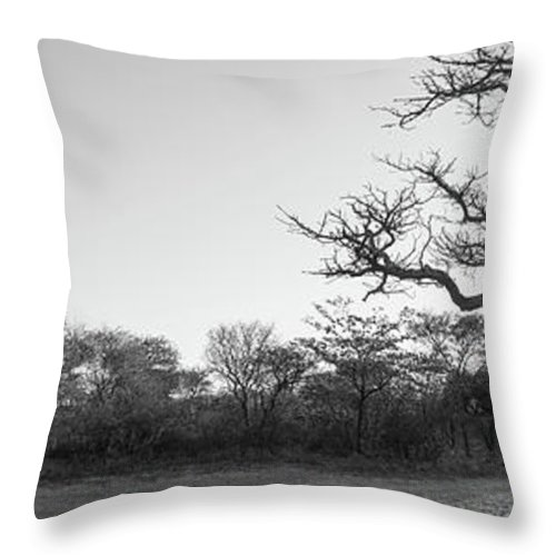 Landscape Throw Pillow featuring the photograph African Landscape Panorama Black And White by Tim Hester