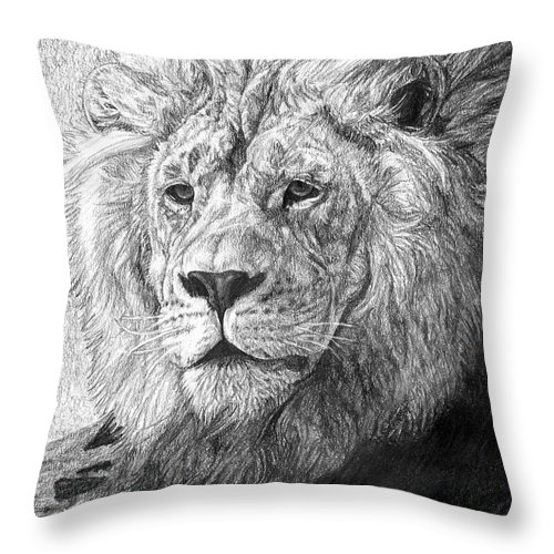 Lion Throw Pillow featuring the drawing African Nobility - Lion by Dan Pearce