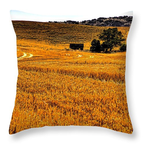 Landscape Throw Pillow featuring the photograph After The Harvest by David Patterson