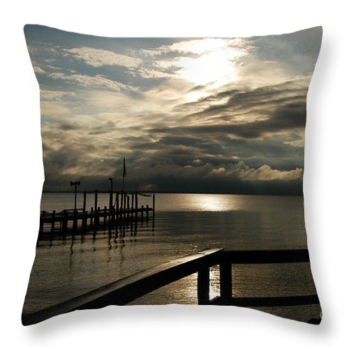 Clay Throw Pillow featuring the photograph After The Rain by Clayton Bruster