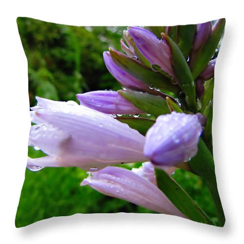 Hosta Throw Pillow featuring the photograph After The Rain by September Stone