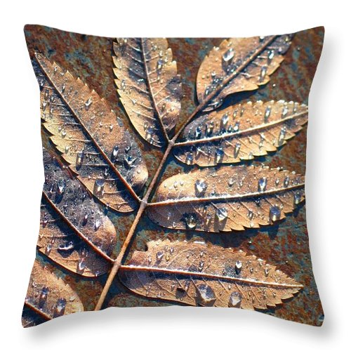 Rain Throw Pillow featuring the photograph After The Rain by Idaho Scenic Images Linda Lantzy