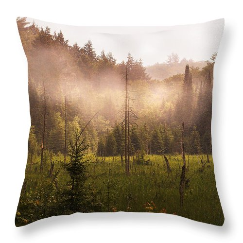 Algonquin Park Throw Pillow featuring the photograph Afternoon Mist by Linda McRae