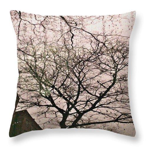 Rain Throw Pillow featuring the photograph Afternoon Rain by Sarah Loft