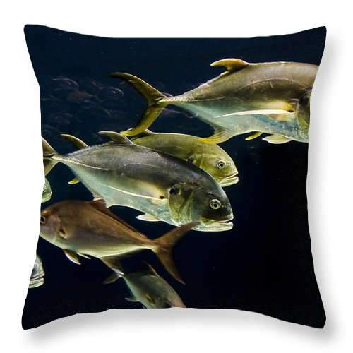 Water Throw Pillow featuring the photograph Against The Tide by Ches Black