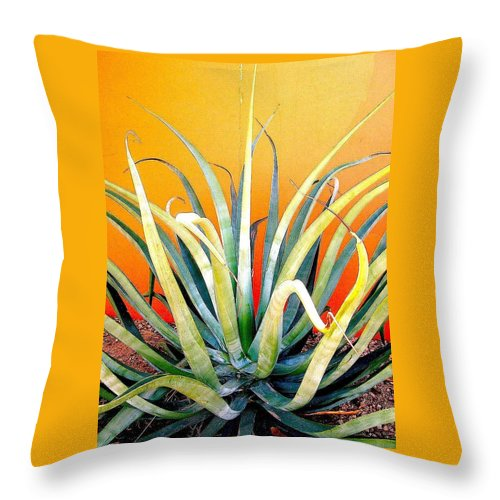 Agave Americana Throw Pillow featuring the photograph Agave Americana by Bradford Turner