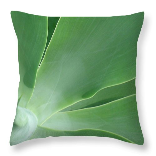 Agave Throw Pillow featuring the photograph Agave by James Temple