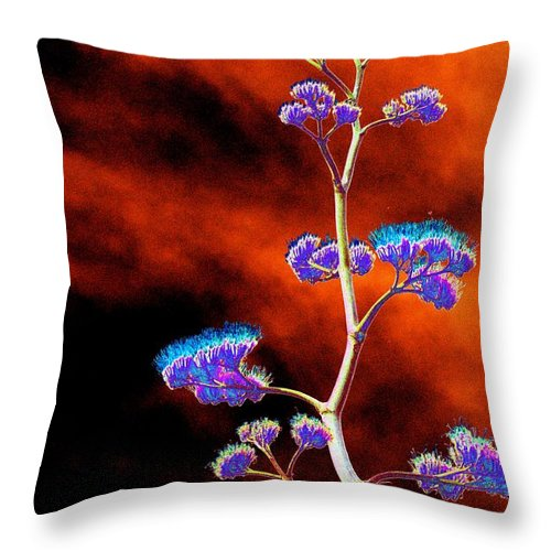 Agave Throw Pillow featuring the photograph Agave Through Tequila Eyes by Richard Henne