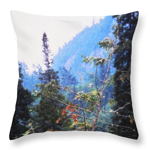 Agawa Throw Pillow featuring the photograph Agawa Canyon by Ian MacDonald