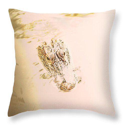 Alligator Throw Pillow featuring the photograph Aged Alligator by Jennifer Kelly