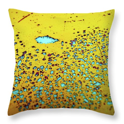 Urban Throw Pillow featuring the photograph Aging In Colour 7 by Tara Turner