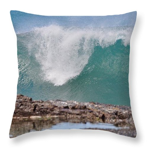 Gold Coast Throw Pillow featuring the photograph Akaw by Csilla Florida