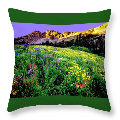 Landscape Throw Pillow featuring the photograph Albion Meadows by Norman Hall