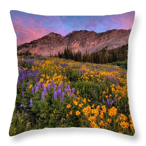 Albion Basin Throw Pillow featuring the photograph Albion Wild by Ryan Smith