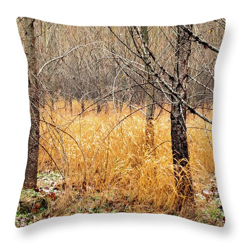 Landscapes Throw Pillow featuring the photograph Alder Grove by Claude Dalley