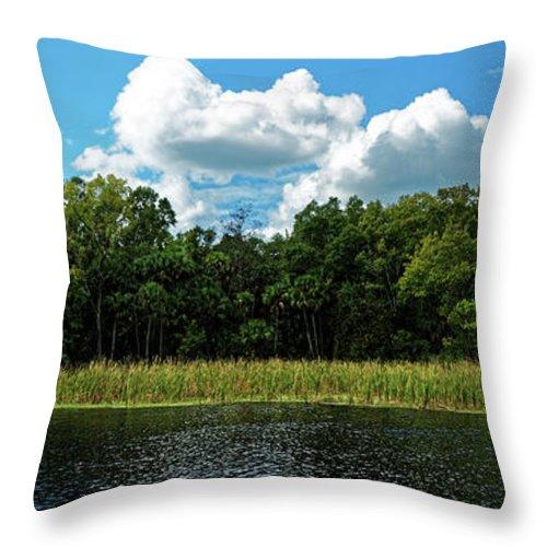 Alexander Springs Throw Pillow featuring the photograph Alexander Creek by Paul Mashburn