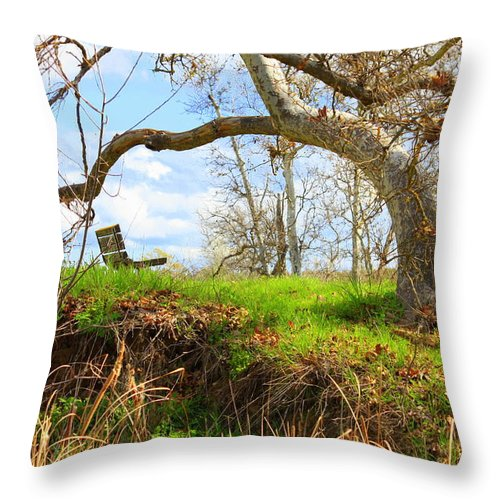 Spring Landscape Throw Pillow featuring the photograph Alice's Wonderland by Carol Groenen