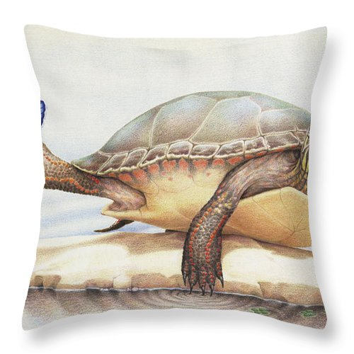 Turtle Throw Pillow featuring the drawing Alight On Her Toes by Amy S Turner