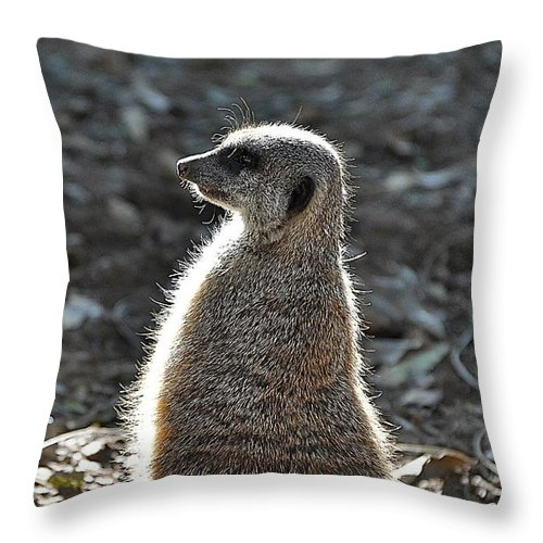 Animals Throw Pillow featuring the photograph All Aglow by Jan Amiss Photography