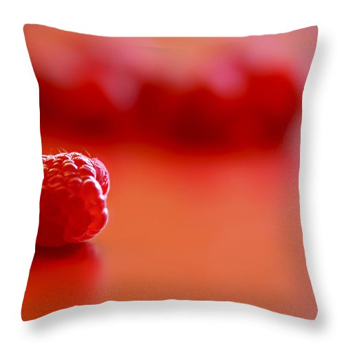 Red Throw Pillow featuring the photograph All Alone by Evelina Kremsdorf