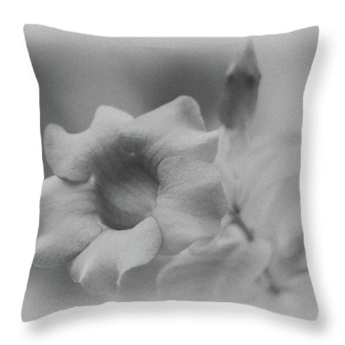 Allamanda Throw Pillow featuring the photograph Allamanda Bloom by Michael Peychich