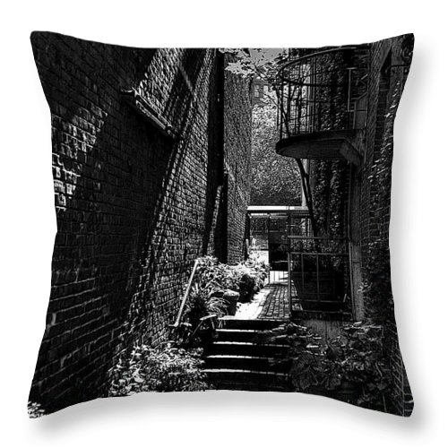 Black And White Throw Pillow featuring the photograph Alley Garden by David Patterson