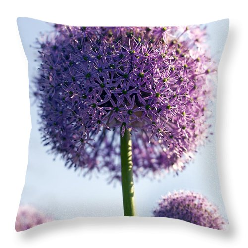 Allium Throw Pillow featuring the photograph Allium Flower by Tony Cordoza