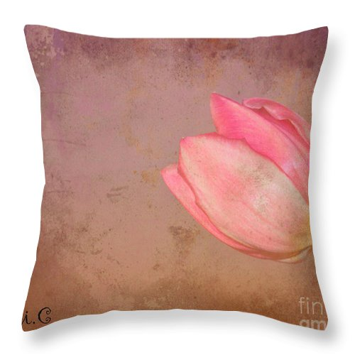 Tulip Throw Pillow featuring the photograph Allure by Traci Cottingham