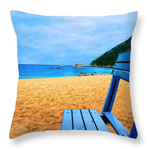 Alone Throw Pillow featuring the photograph Alone And Blue by Paul Wear