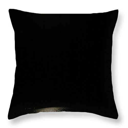 Night Throw Pillow featuring the photograph Alone At Night by Marilyn Hunt