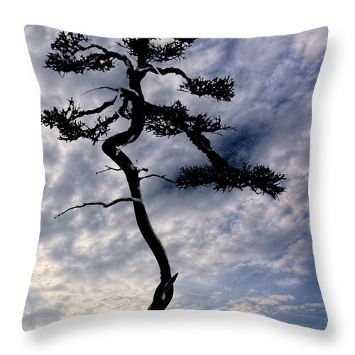 Nature Throw Pillow featuring the photograph Alone by Ches Black