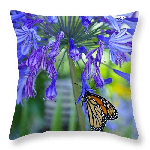 Garden Throw Pillow featuring the photograph Alone In The Garden by Dennis Reagan