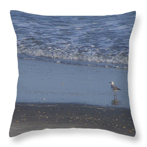 Ocean Throw Pillow featuring the photograph Alone In The Sand by Teresa Mucha
