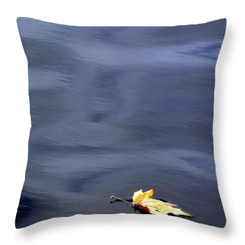 River Throw Pillow featuring the photograph Alone by Jo Hoden