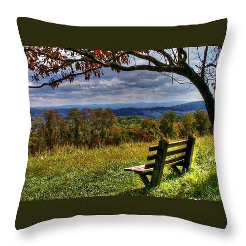 Nature Throw Pillow featuring the photograph Alone by Mitch Cat