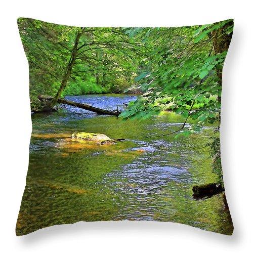 Cullasaja River Throw Pillow featuring the photograph Along The Cullasaja River by HH Photography of Florida