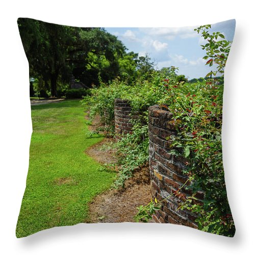 America Throw Pillow featuring the photograph Along The Curved Wall by Jennifer White