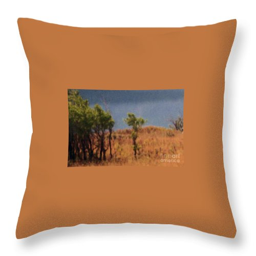 Field Throw Pillow featuring the digital art Along The Lake by Richard Rizzo
